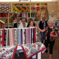 Unveiling of Ann's First Fabric Line - Poppy Panache